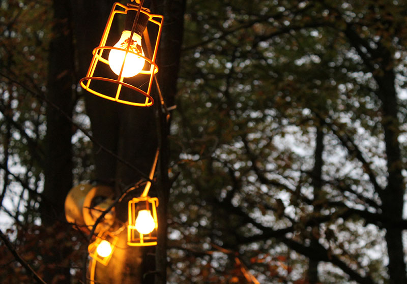 lanterns in trees christmas fair
